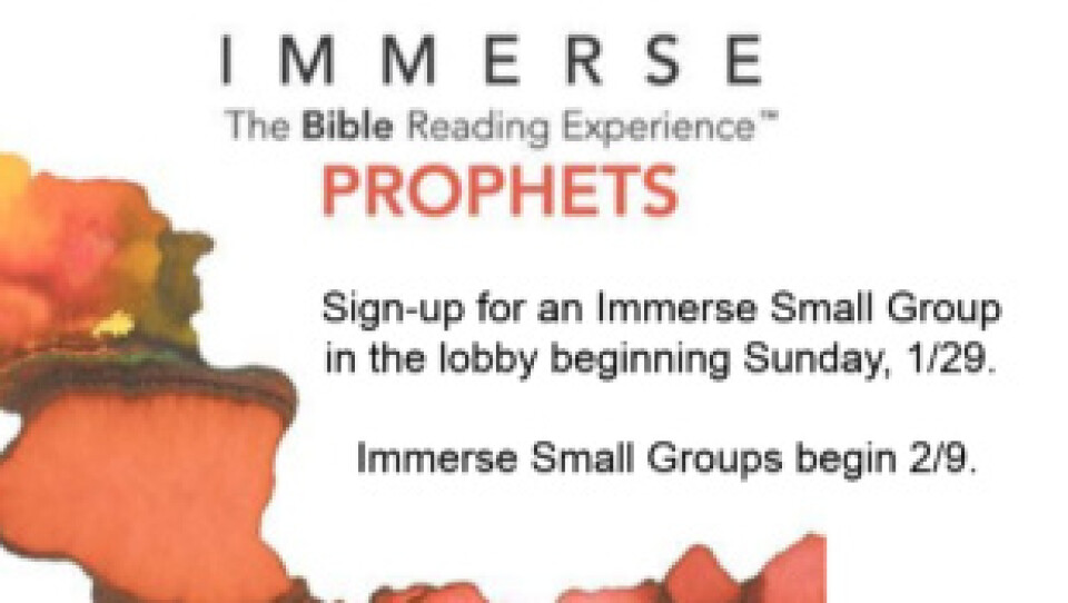 Immerse Small Groups Begin!